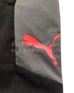 Штаны Puma ftblNXT Woven Pants 656444-01